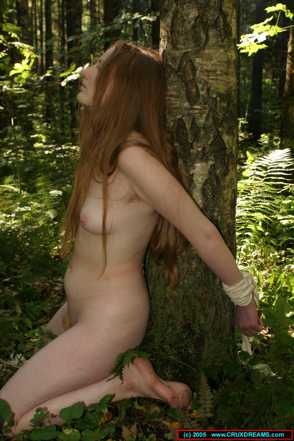Girl tied to tree and fucked confirm
